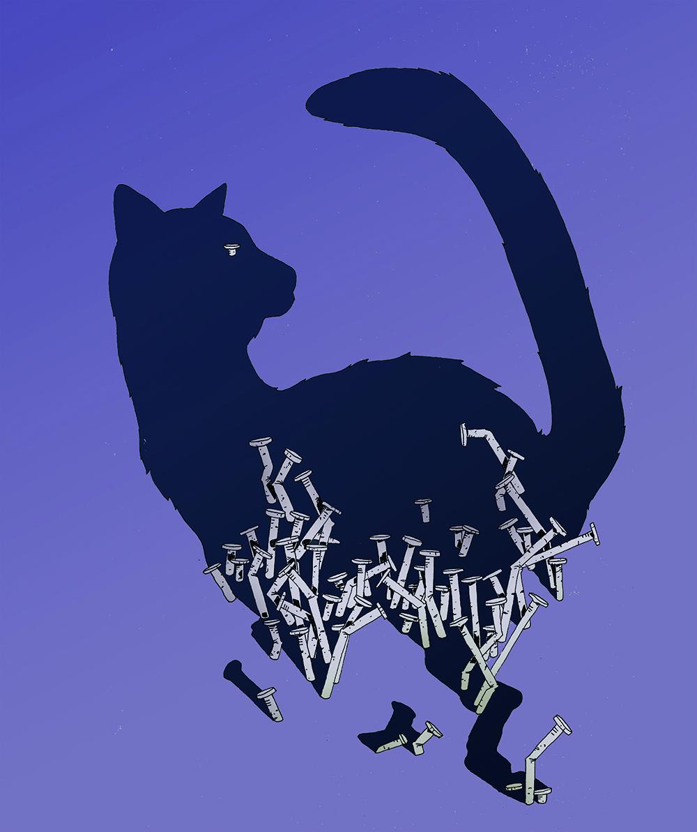 catWEB